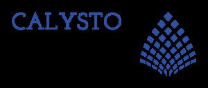 The Calysto Group